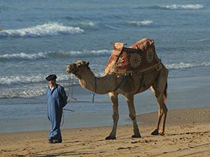 swell-search-tours_marokko-005
