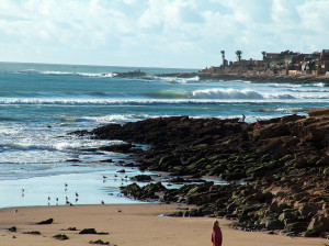 swell-search-tours_taghazout-004